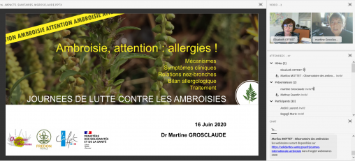 Capture d'écran extraite du webinaire « Ambroisie, attention : allergies ! » de Martine Grosclaude